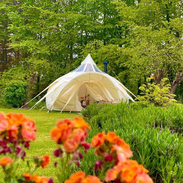 Stargazer Lotus Belle Tent